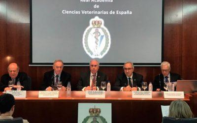 Convocatoria de premios de la Real Academia de Ciencias Veterinarias de España, 2020